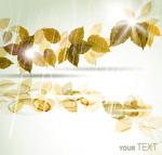 Link toRain leaves vector