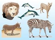 Link toRealistic animals vectors free