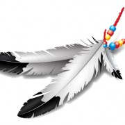 Link toRealistic feather illustration design vector 02 free