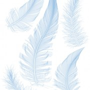Link toRealistic feather illustration design vector 03 free