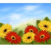 Link toRealistic flower design background art vector 03