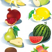 Link toRealistic fruits icons vector 01 free