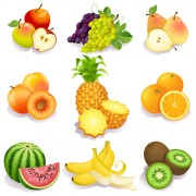 Link toRealistic fruits icons vector 03 free