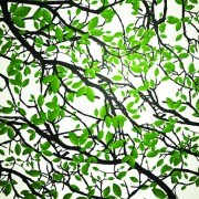 Link tovector leaf tree Realistic