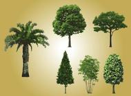 Link toRealistic tree vectors free