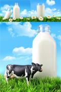 Link toReally natural milk psd