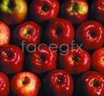 Link toRed apple psd