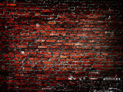 Link toRed brick wallpaper background picture material