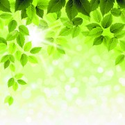 Link toRefreshing green leaves background vector 03 free