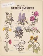 Link toRetro flowers vegetation vector