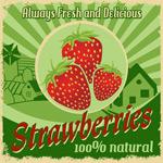Link toRetro fresh strawberry poster vector