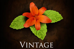 Link toRetro orange flower background vector