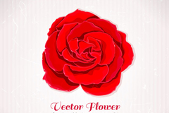 Link toRetro red rose background vector