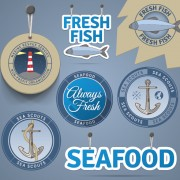 Link toRetro tag and badge sea elements vector free