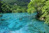 Link toRiver scenery in jiuzhaigou hd pictures