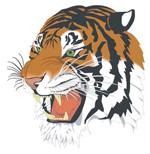 Link toRoaring tiger vector