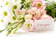 Link toRomantic pink flower picture download