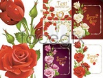 Romantic rose greeting cards vector