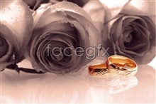 Link topictures rings rose Romantic