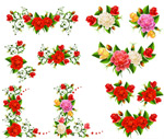 Roses and decorative vector