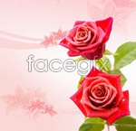 Link toRoses decorate the background psd
