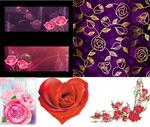 Link toRoses flowers vector