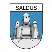 Link toSaldus logo
