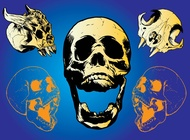 Link toScary skulls vector free