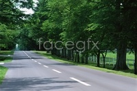 Link toScenic country road picture