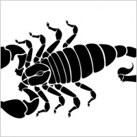 Link toScorpion silhouette vector