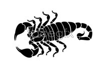 Link toScorpion silhouette vector graphics