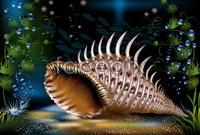 Link toSea conch vector