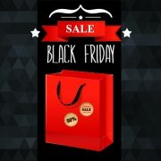 Link toSet of black friday sale elements vector 01