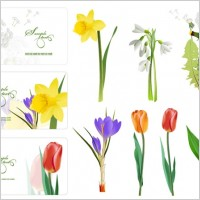 Link toSeveral flowers vector