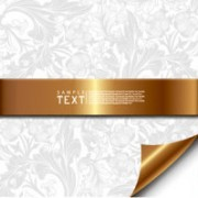 Link toShading and roll angle backgrounds vector