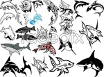 Link toSharks whales vector