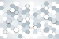 Silver hexagonal honeycomb shape background vector