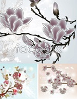 Link toSimple but elegant magnolia vector