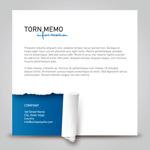 Link toSimple paper memos vector