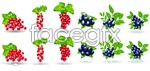 Link toSimulation of lovely fruits vector