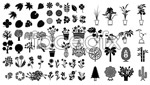 Link toSketch of plants and trees vector