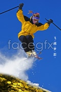 Link toSkiing business and financial psd