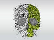 Link toSkull design vector free
