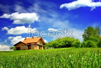 Link toSky fields landscape hd pictures