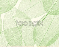Sophisticated vector veins vein background leaf