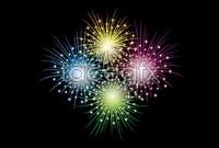 Link toSplendid fireworks explosions vector