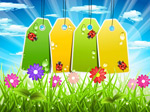 Spring blank hang tags vector