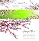 Link toSpring blossom vector