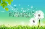 Link toSpring dandelion psd