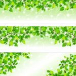 Link toSpring theme banner vector